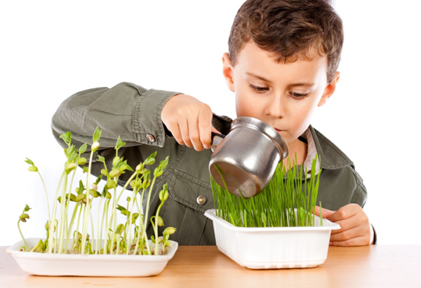 El contacto con la naturaleza ayuda a que los niños vayan adquiriendo esa sensibilidad hacia todo ser vivo.