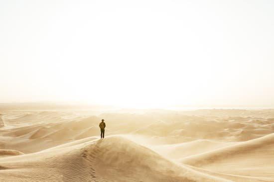 En la vida, encontramos jardines y encontramos desiertos.