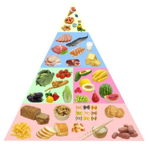 Necesitamos una alimentación sana y equilibrada.