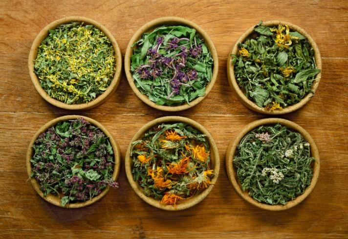 Las plantas se usan y se han usado siempre para la curación.